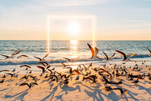 Sun Setting Over Flock Of Seagulls At Lovers Key State Park Beach With Glowing Square In Background