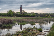 Grassy Wetland At Dusk With Neuland Lighthouse In Background