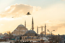 Turkey, Istanbul, Seagull Flying Over Yeni Cami Mosque At Dusk