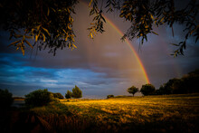 Landscape Of A Field Covered In Greenery Under A Cloudy Sky With A Rainbow On It After The Rain
