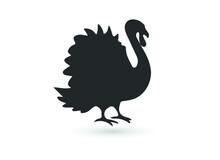 Turkey Bird Black Silhouette Animal