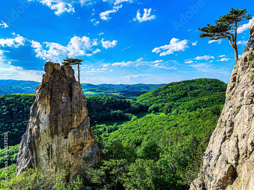 Tablou Canvas Mesmerizing view of a fantastical wilderness with lush green trees overlooked by