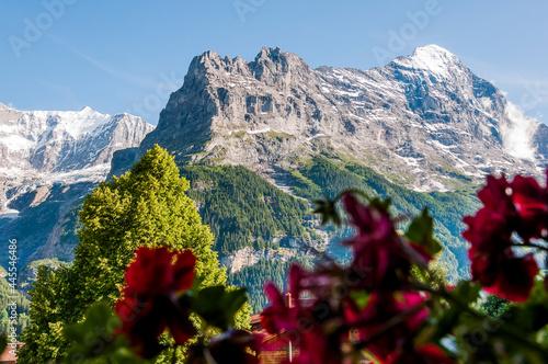 Fotografie, Obraz Grindelwald, Eiger, Eigernordwand,  Grindelwaldgletscher, First, Bort, Alpen, Be