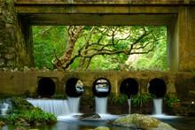 Photo Frame  Shing Mun Reservoir Hong Kong