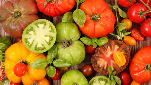 Fotografering various of colorful tomatoes and basil