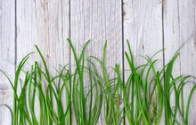 Background Green Grass On Wooden Floor With Copy Space Above.