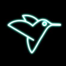 BIRD NEON LIGHT ON A BLACK BACKGROUND HUMMINGBIRD