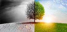 Natur Im Wandel