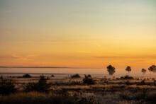 Sonnenaufgang Mit Nebel In Der Lüneburger Heide
