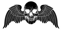 Winged Skull Vintage Woodcut Illustration