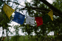 Tibetan Prayer Flags In The Garden. Lung-ta Flags Buddhism Tradition
