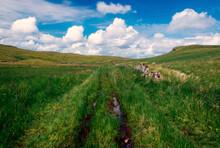 Clouds And Brocken Down Wall, Mistylaw Muir, Clyde Muirshiel Regional Park, Renfrewshire, Scotland, UK