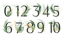 Tropical Green And Gold Floral Number Set - Digits 1, 2, 3, 4, 5, 6, 7, 8, 9, 0, 10 With Green And Gold Tropical Leaves. Tropical Set For Wedding Invitations And Decoration. High Quality Illustration