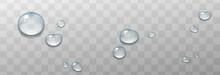Beautiful Water Drops Illustration