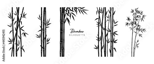 Canvas Print Set of bamboo silhouette on white background
