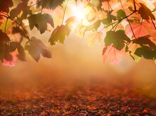 Red And Brown, Autumn Tree Leaves With An Autumnal Bokeh Background.