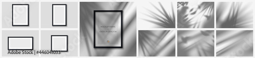 Fotografie, Obraz Set realistic black picture frames 4 pcs and set tropical shadow 6pcs from the window