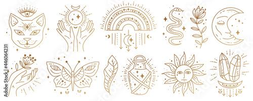 Fotografie, Obraz Set of magic boho symbols