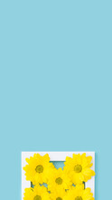Yellow Flowers In White Frame On Blue, Tall Banner Design