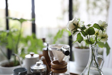 Small White Roses In Glass Vase With Coffee Drip Brew