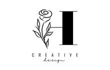 H Letter Logo Design With Black Rose Vector Illustration.