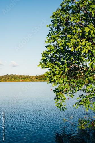 Fototapeta Lago na floresta amazônica na região de alter do chão, pará, brasil