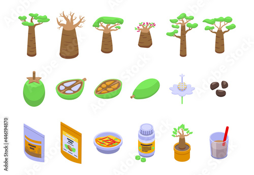 Wallpaper Mural Baobab icons set isometric vector. Fruit tree. Baobab flower seed