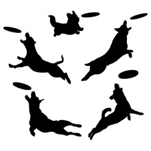 Silhouettes Of Dogs Playing Frisbee. Dog Jumping In The Air Grabs A Frisbee. Vector Isolated Illustration On White Background.