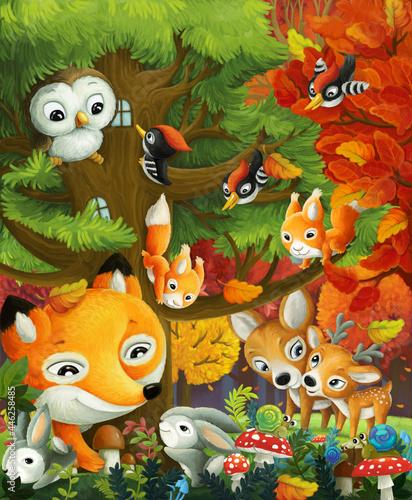 Fototapeta premium cartoon forest animals friends in the forest illustration