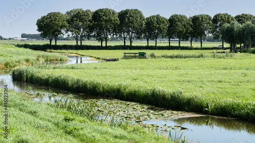Fotografie, Obraz A row of trees and a small river that flows through the polder landscape near the village of Eemnes