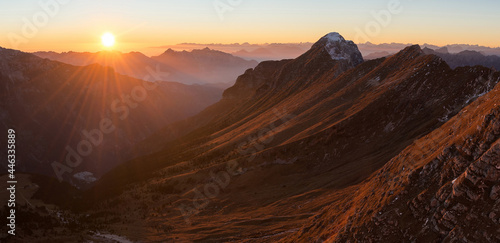 Fotografie, Tablou Alpine Ibex in the mountains at sunset