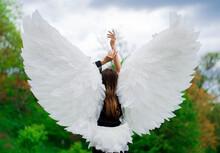 White Angel In Flight
