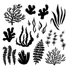 Summer Time Graphic. Underwater Set Of Silhouettes For Design. Flat Vector Illustration With Isolated Marine Objects. Black Shapes On A White Background: Seaweed, Coral, Reef, Sea Sponges