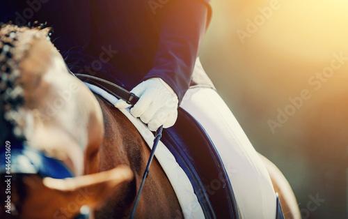 Obraz na plátně A rider's hand in a white glove with a rein. Equestrian sport.