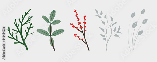 Canvas Vector branches of winter plants, conifers christmas tree, holly plant berries and ears
