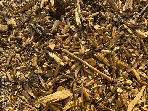 Fotografie, Obraz Wooden sawdust background. Wood chips texture.