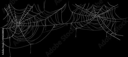 Fotografia White spider web on a black background.