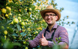 Orcharding. Farmer checking apples in the orchard. Hobbies and leisure, agricultural concept