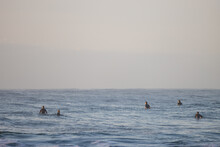 Surfers In The Sea