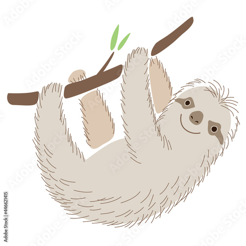 Fototapeta premium A cute cheerful sloth hangs on a branch and smiles. Holds with paws. Stylish vector graphics