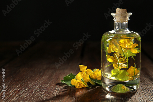 Fototapeta Bottle of celandine tincture and plant on wooden table, space for text