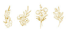 Nature Flowers Golden Handdrawn Classic Design Vector Illustration