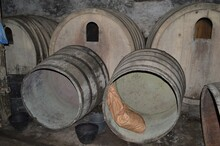 Wine Cellar With Wooden Barrels