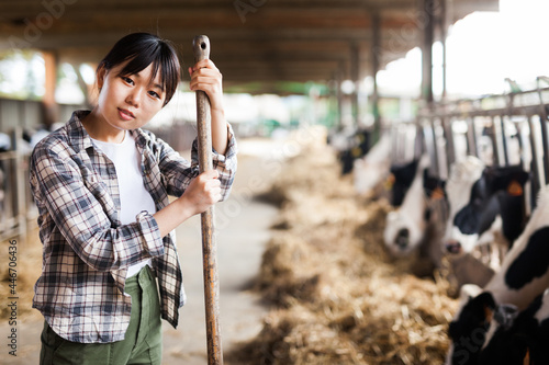 Obraz na plátne Portrait of chinese female farmer who is standing at her workplace near cows at the farm outdoors