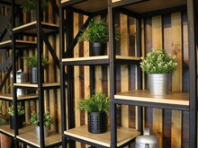 Decorative Split-level Shelves With Flowers In Pots To Create An Atmosphere Of Eco-coziness, Cozy Decor With Potted Greenery On Shelves Made Of Wood And Metal