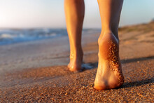 Close Up Detail Bottom Behind Pov View Of Pretty Female Person Barefoot Legs Heel Walking By Scenic Sandy Ocean Or Sea Beach At Warm Golden Sunrise Morning. Wild Nature Travel And Vacation Concept