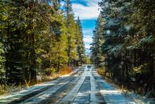 A Long Way Down The Road Of Yosemite National Park, California