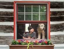Boy And Dog Looking Out Open Window Of Log Cabin On Summer Day.