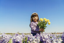 Little Girl Holding Yellow Tulips On Hyacinth Field