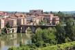 Occitanie, ville d'Albi